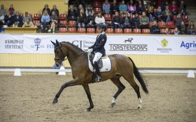 Expertkommentatorer via Dressyrappen under SWB Equestrian Weeks