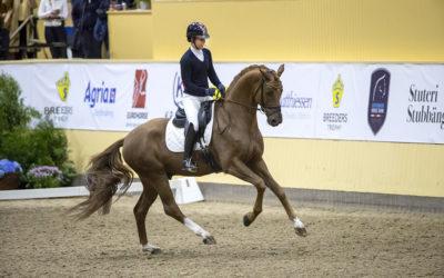 Nu släpps biljetterna till SWB Equestrian Weeks