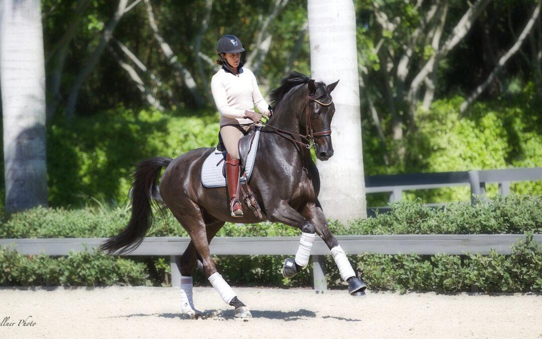 Tinne Vilhelmson till SWB Equestrian Weeks