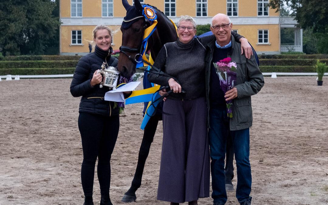Stuteri Stubbäng stöttar återigen pengar till svensk dressyravel!
